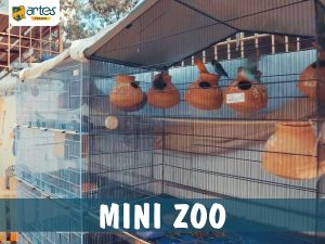 Mini Zoo - Kids Learning Center